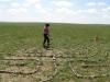 2011-06-mongolei-1-207
