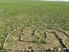 2011-06-mongolei-1-235